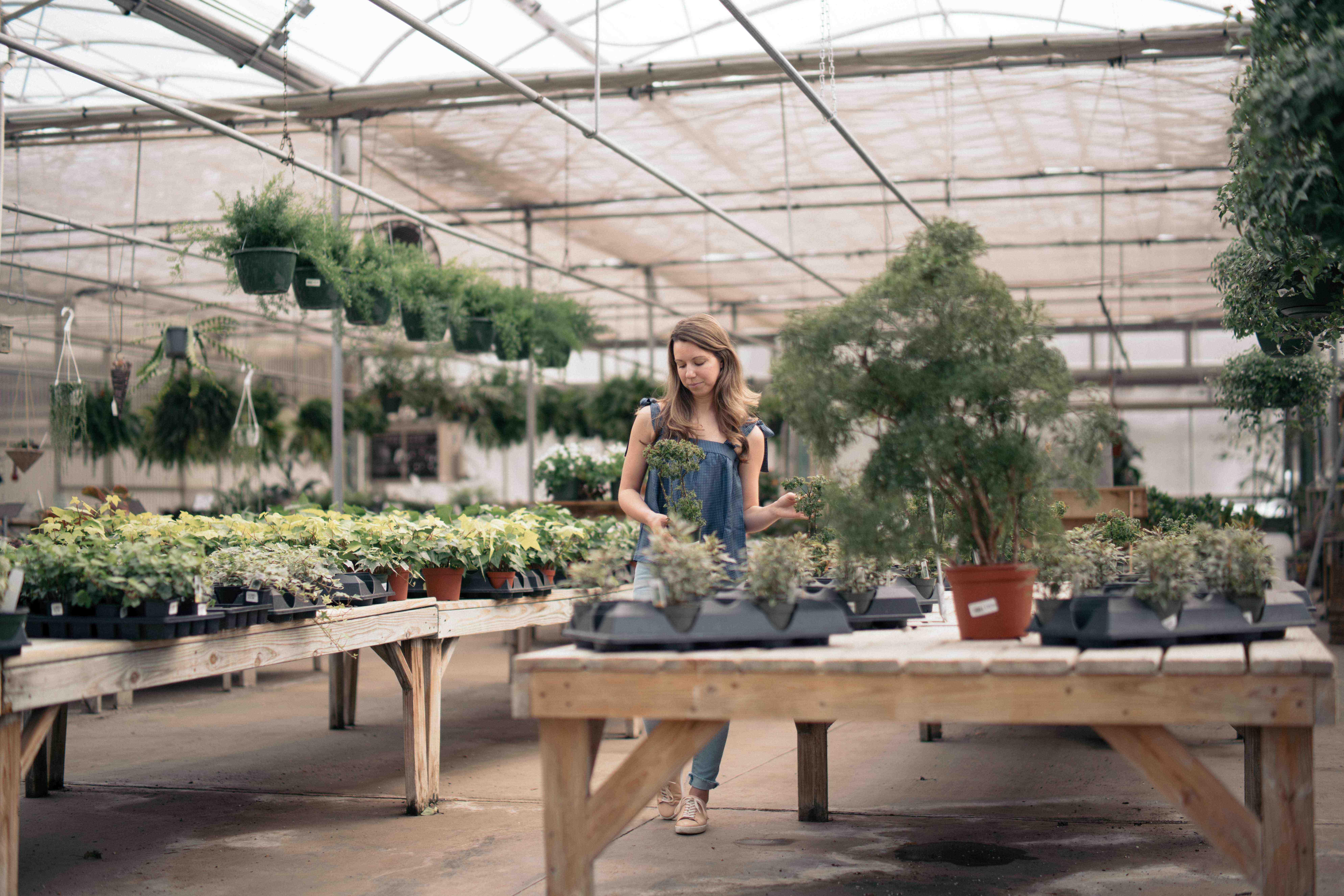 Kitchen Garden 8