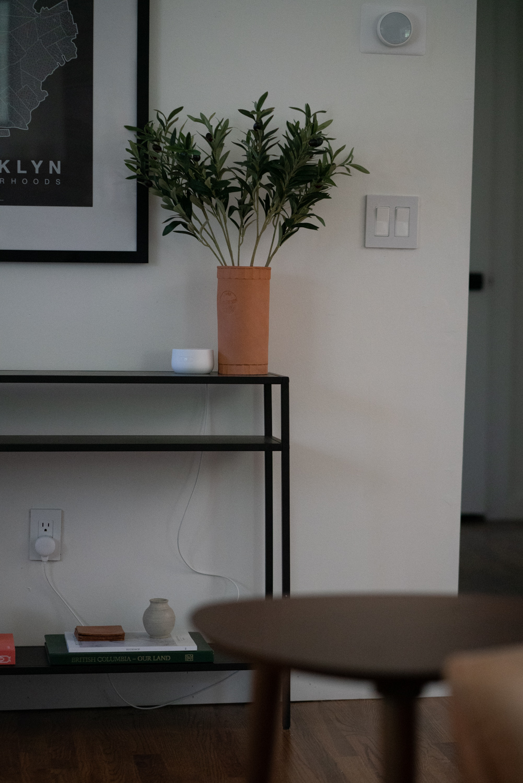 Wayfair Living Room 4