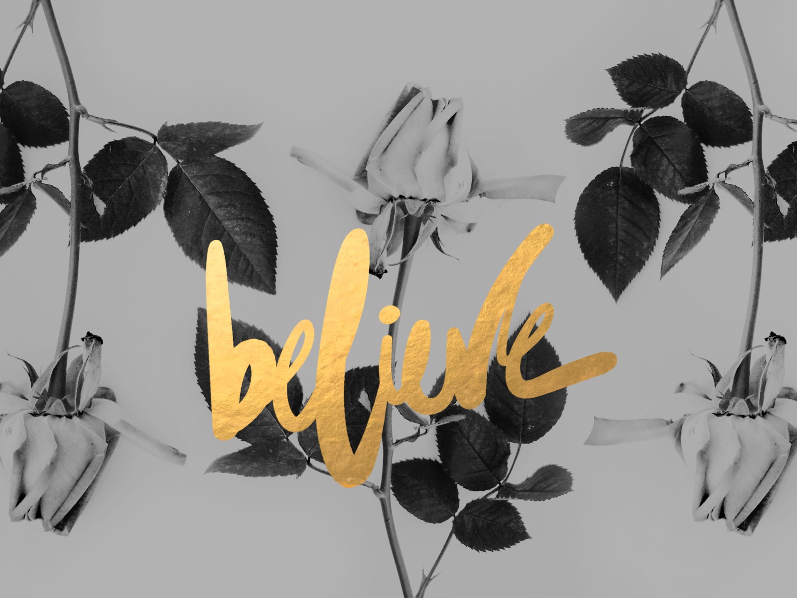Believe by cocorie d76uu38